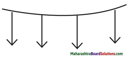 Maharashtra Board Class 9 Hindi Lokbharti Solutions Chapter 2 बिल्ली का बिलुंगड़ा 2