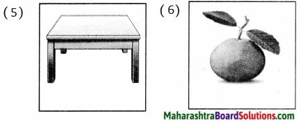 Maharashtra Board Class 5 Hindi Solutions Chapter 13 पहचान हमारी - भाग (२) 4