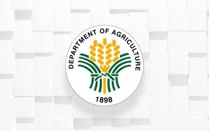 DA boosts poultry project in Zambo Norte town