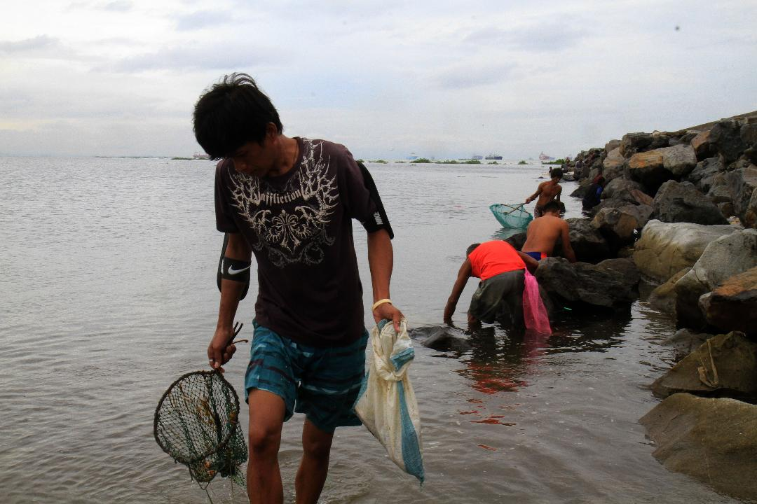 Fishermen now catch assorted fishes at Baseco Compound in Port Area