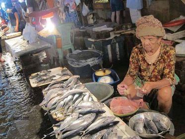 Local growers oppose planned fish importation