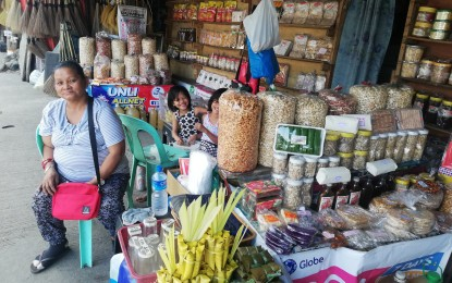 LGUs asked to defer payment deadlines for MSMEs: Palace