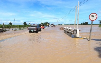 P20-M crop, livestock losses in NegOcc due to New Year's floods