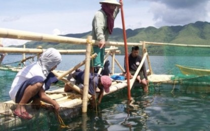 Bohol town fishers earn P117K from BFAR floating fish cages