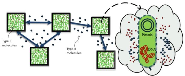 Molecular Communication motivation