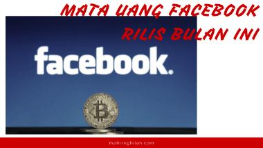 mata uang facebook