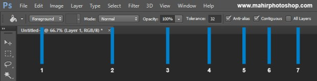 option bar paint bucket tool