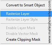Rasterize Layer panel