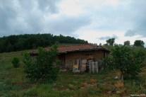 Shelter - Barınak