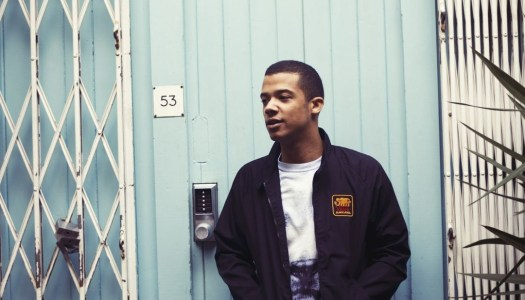 The Rough Guide To Raleigh Ritchie