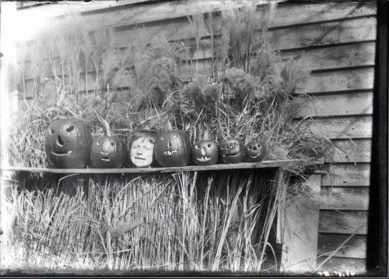 Lindley Vickers in pumpkins