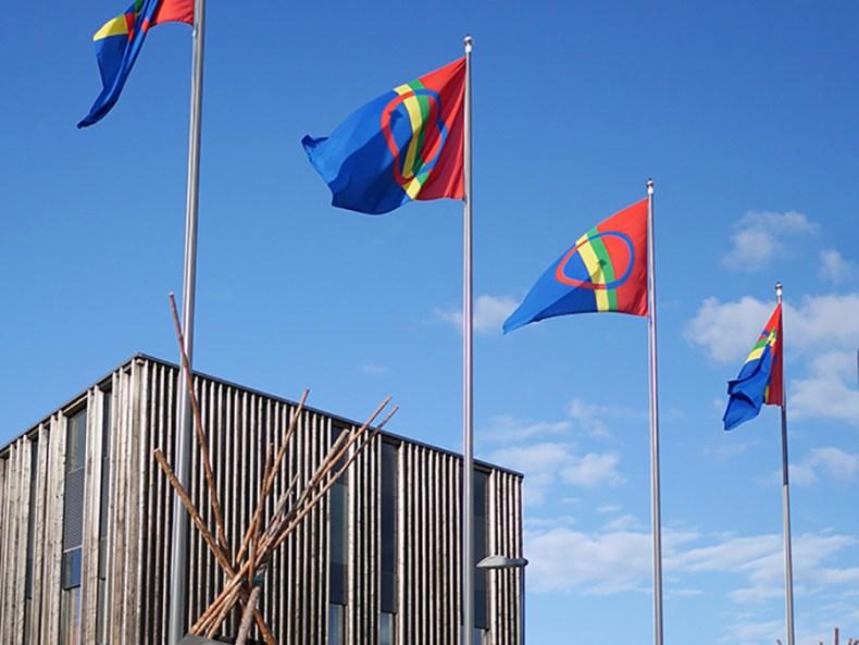 Sami Flagge Inari