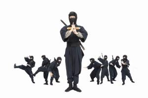 Ninja Kyoto