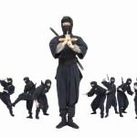 The Ninja Memory