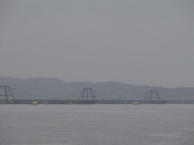 Aquaculture de saumon en Norvège