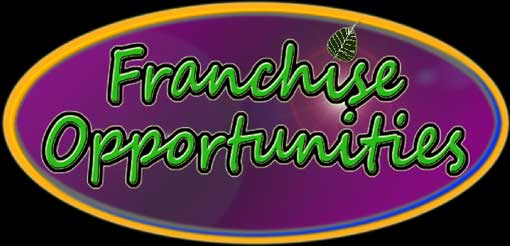 Self Assessment and Franchise-Opportunities