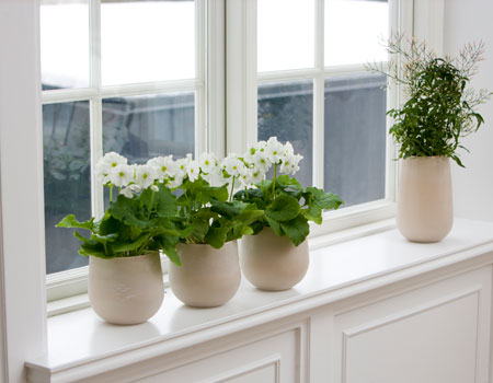 3 Areas in Your Home at Risk of Deterioration