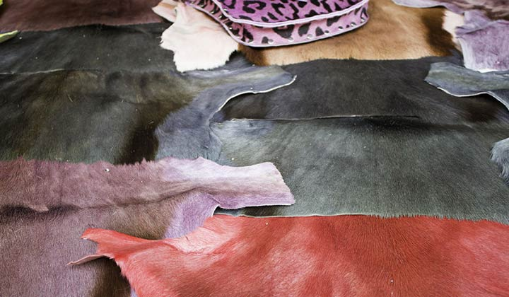 How to Clean Your Favorite Animal Rugs and hides in your home