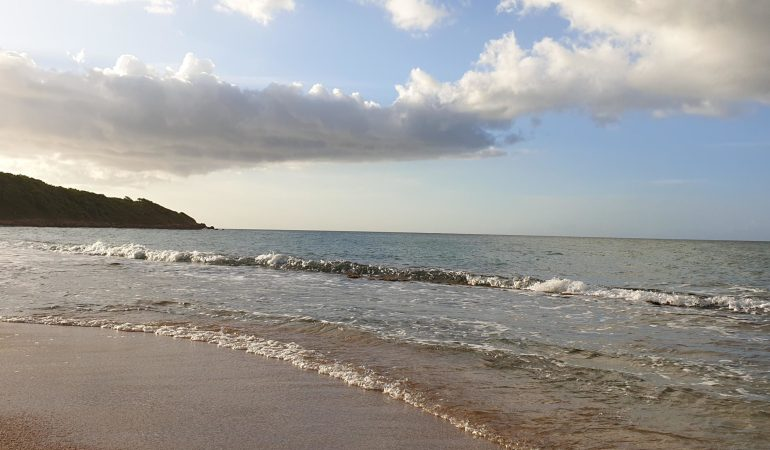 L'océan source de vie