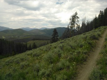 Along the Colorado Trail, doing some mountain bicycling.