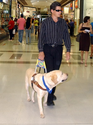 Man walking through mall with a guide dog