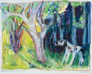 17SU holmquist brita maestro and birch tree