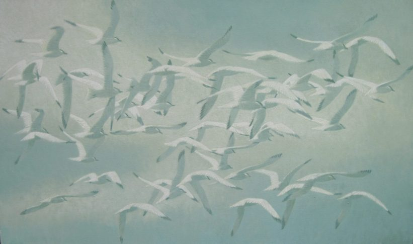 Sawin 1 Tern Migration warm white clouds
