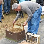 April 2011 – The Beekeepers Calendar