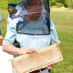 August 2012 – The Beekeepers Calendar