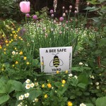 Behind the sign: Portland Protectors works to make the community safe for bees (and all of us!)