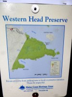 westernhead3