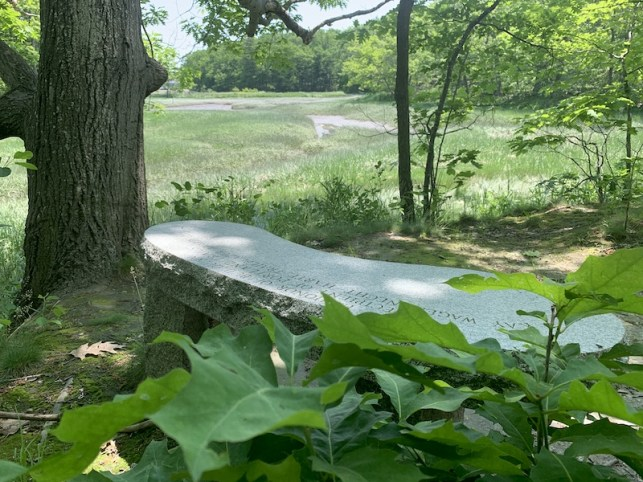 Fore-river-trail2