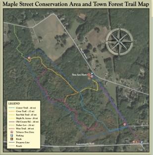 maple street map
