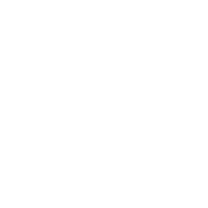 Maine Coon Cat Lovers Logo