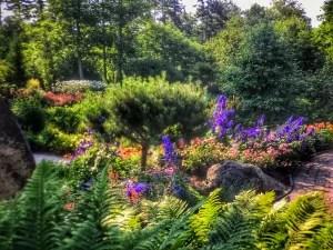 botanical garden 4