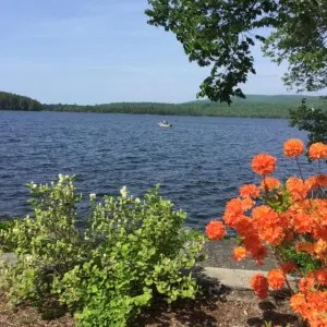 The fade-proof lake