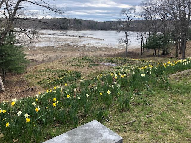 Laurel hill river view