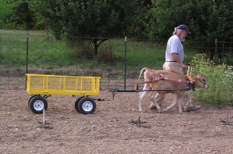 Farm ID 2357