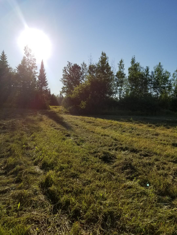 Farm ID 3183 – Pricing Reduction