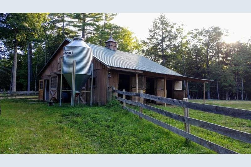 Farm ID 3384