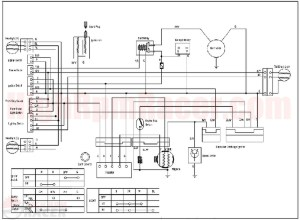 Wiring Diagram For Kazuma Meerkat 50cc Atv | Wiring Diagram