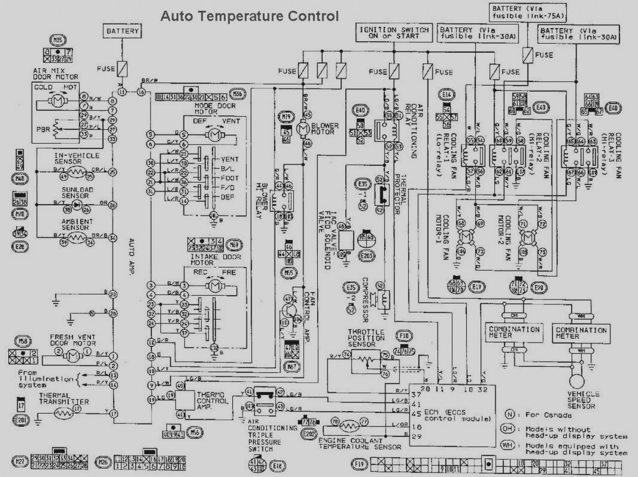 Nissan 521 Wiring Diagram