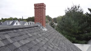 Maine-Wildlife-Management-inspecting-a-ridge-vent-and-chimney-flashing-for-signs-of-bat-entry