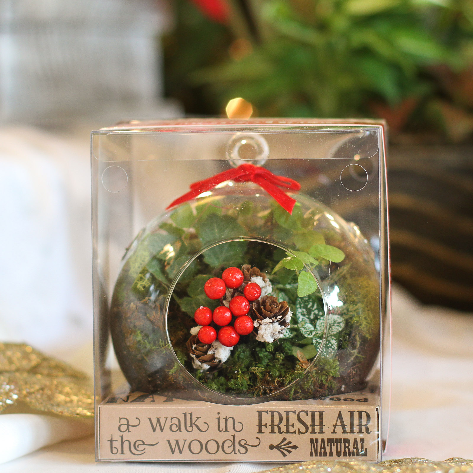 New Christmas Arrivals { Best Floral Delivery in Twin Cities }