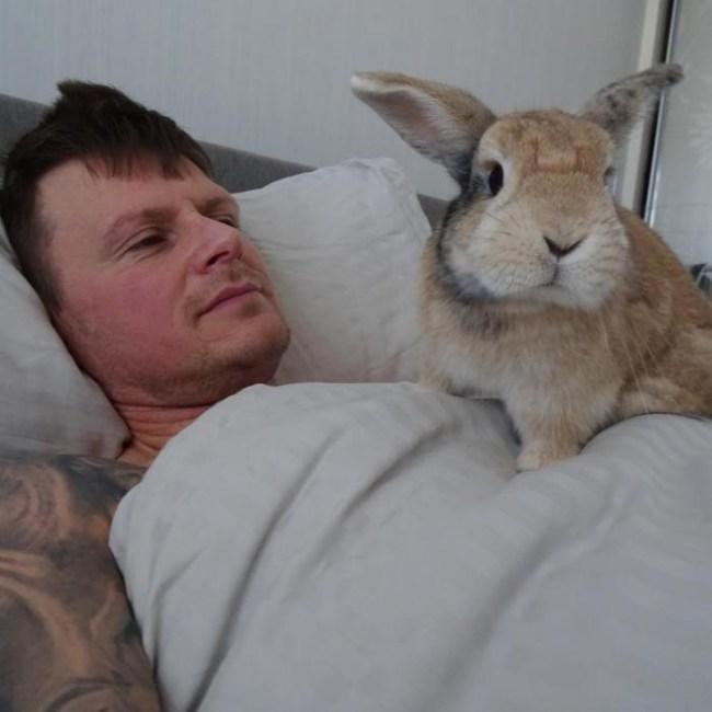Шон говорил, что не любит животных, но затем встретил Шерифа (16 фото)