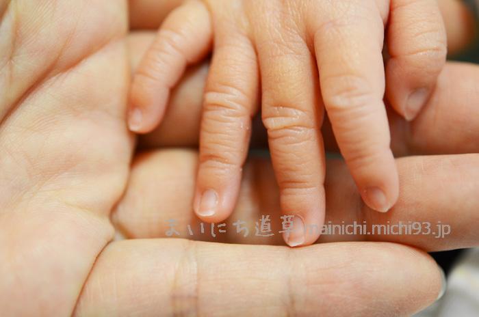 新生児の爪