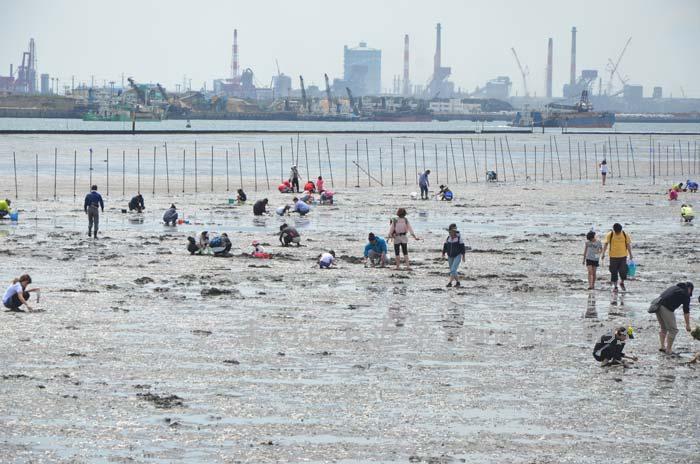 潮干狩りで賑わう、千葉の木更津海岸