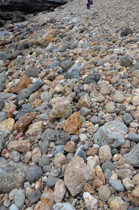 菖蒲沢海岸の石ころ