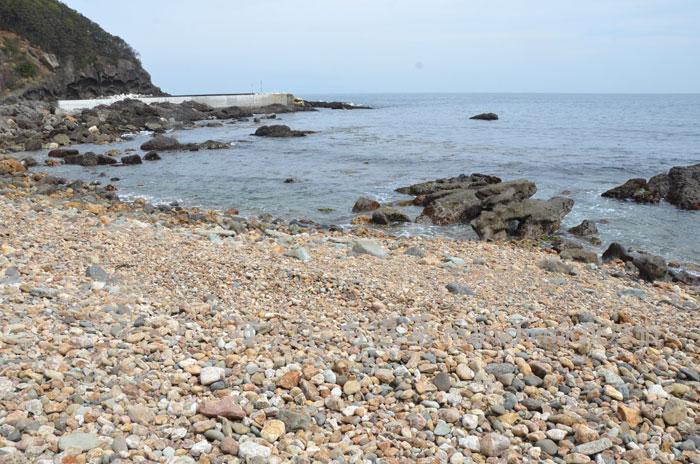 大小の小石でうまる礫浜(れきはま)