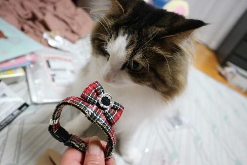 雪月花 猫用首輪